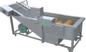 New Designed Brush Washing Machine for Vegetables pictures & photos