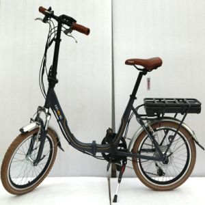 20 Inch External 7 Speed Folding Electric Bicycle (LN20F1502)