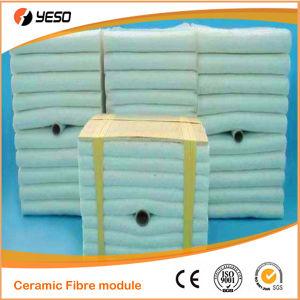 1500 C Ceramic Fiber Module