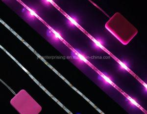 7 Colors LED Light up Shoe Light Luminous Cap Baseball Hat pictures & photos
