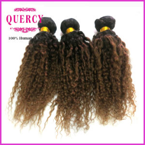 "8-30"" Quercy Hair 100% Human Virgin Remy Malaysian Hair Two Tone Omber Color Curly Hair Weft pictures & photos"