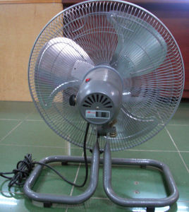 Oscillating Electric Fan with CE Approval pictures & photos