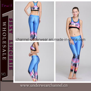 New Design Yoga Fitness Sports Wear Legging (TMY8900) pictures & photos