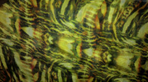 Silk Chiffon Digital Printing Fabric pictures & photos