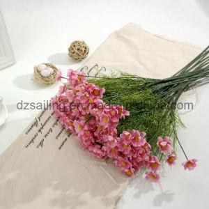 Colorful Cheap Artificial Comos Flower for Home Deco (SF15591A) pictures & photos