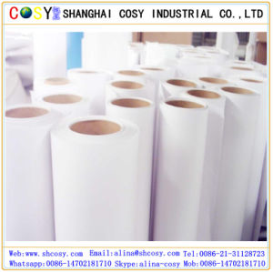 Widely Used PP Synthetic Paper for Indoor Digital Printing pictures & photos