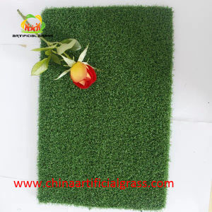 Artificial Grass Used in Golf Court and Golf Turf pictures & photos