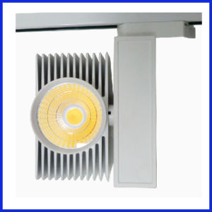 30W Bridgelux COB at 220V CE Drivers LED Track Light (BSTL-8)