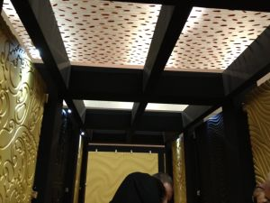 Eco Resin Panel for ceiling pictures & photos