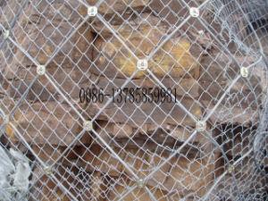 SNS Passive Protedtive Mesh (SNS003) pictures & photos