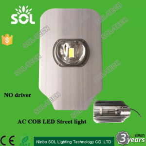 Cheap Price 30W 40W 50W IP68 No Driver AC COB LED Street Light