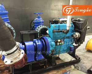 Diesel Engine Rotor Water Pump pictures & photos
