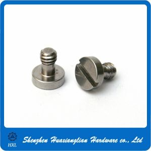 OEM Customised/Standard Stainless Steel Brass Aluminum Screw pictures & photos