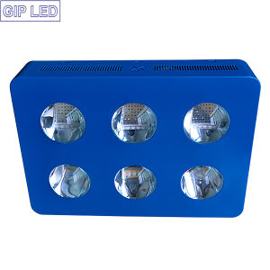 Gip New Patent 1000W 756W Panel LED Grow Lights pictures & photos