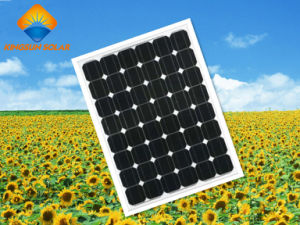 200W Hot Sale Fantastic Monocrystalline Silicon Solar Panel pictures & photos