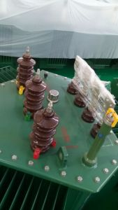 S14-RL Three-Dimensional Wound Core Oil-Immersed Power Transformer pictures & photos