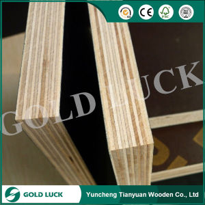 Waterproof Phenolic Film Faced Plywood pictures & photos