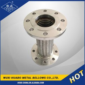 Yangbo Stainless Steel Flange Bellow Pipe pictures & photos