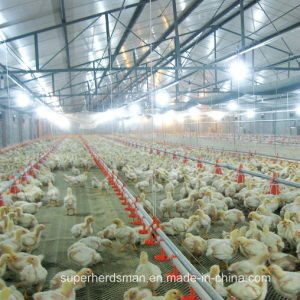 Automatic Poultry Farm Water Drinkers for Chicken pictures & photos