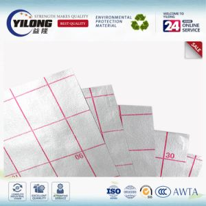 Aluminumized 30g PP Non Woven Fabric Coating PE Film for Mat pictures & photos