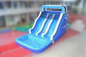 2017 New Design PVC Inflatable Water Slide with Pool (CHSL228-1) pictures & photos