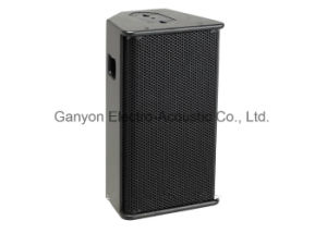"""PS10-R2 10"""" Stage Monitor Speaker, PA Speaker pictures & photos"""