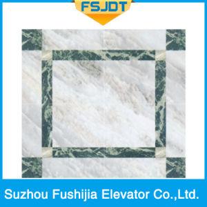 Luxurious Decoration Passenger Lift by Advanced Technology (FSJ-K28) pictures & photos