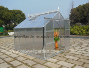 Hobby Greenhouse of Size 9′ (W) *9′ (L) (HB909) pictures & photos