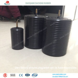 Various Specifications Rubber Test Plugs Made in China pictures & photos