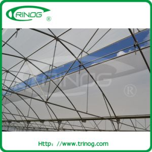 Fixed Rroof vent greenhouse for tropical areas pictures & photos