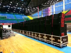12inch Line Array Professional Audio pictures & photos