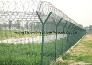 Galvanized Stainless Steel Single Coil Barbed Wire pictures & photos