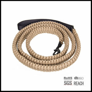 Outdoor Paracord Survival Pet Dog Collar and Leash pictures & photos
