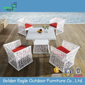 Garden Rattan Dining Set (FP0102) pictures & photos