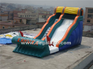 Inflatable Big Kahuna Slide / Inflatable Dry Slide pictures & photos