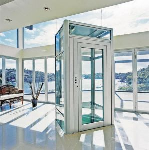 Passenger Home Villa Residential Elevator with Hairless Stainless Steel Decoration pictures & photos