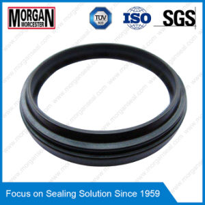 Da17/P8 Profile Double Acting Wiper Seal Scrapers/Dust Seal pictures & photos