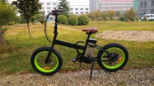 F&R Tekro Disc Brake Ebike 48V 750W Folding Electric Bike pictures & photos