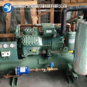 Bitzer Condensing Unit Refrigerator with Ce Certificate pictures & photos