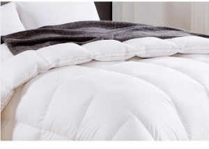 Direct Factory Supplying Down Feather Quilt Duvet Comforter pictures & photos