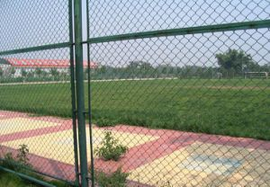 School Playground 9 Gauge Diamond Hole PVC Coated Chain Link Fencing pictures & photos