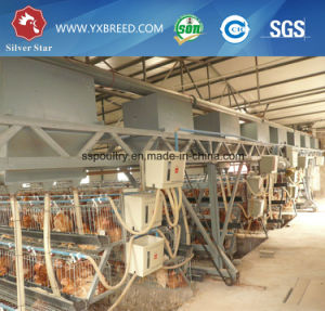 Automatic Poultry Chicken Layer Battery Cages (A3L120) pictures & photos