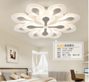 New Acrylic Flower LED Ceiling Light Modern Lighting Guarantee 100% pictures & photos