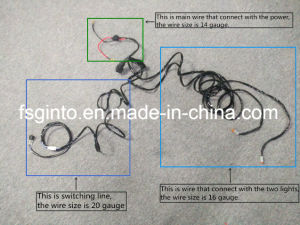 Universal Wire Harness for Automotive Fog Lights pictures & photos