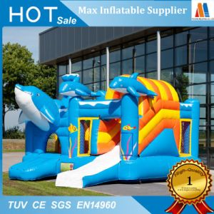 Outdoor Play Ground Inflatable Jumper Bouncer Moonwalk House pictures & photos