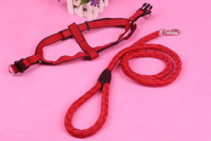 Pet Products Supply Dog Harness (H001) pictures & photos