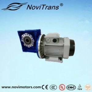 750W Flexible Synchronous Motors with Decelerator (YFM-80/D) pictures & photos