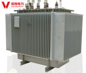 Oil-Immersed Transformer/Three Phase Transformer/ Power Supply pictures & photos