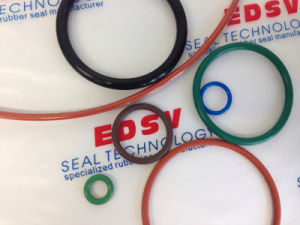 Viton Fluororubber O-Rings/O Ring pictures & photos