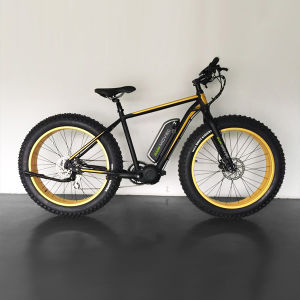 Fat Tire Electric Bike E-Bike pictures & photos